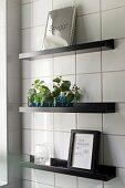 Vases of leaves and framed picture on black floating shelves on white-tiled wall