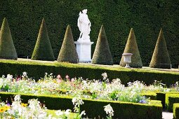 Borders with hedges and a mythological stone sculpture between cone-shaped boxtrees in the Garden of the Palace of Versailles