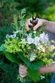 Woman's hands holding bouquet of summer flowers and secateurs