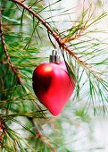 Red, heart-shaped bauble hanging from pine branch