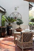 Wood and wicker furniture on terrace with Bonsai tree and exotic potted plants