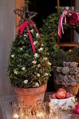 Small, festively decorate potted tree and lit candles in tealight holders