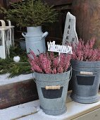 Heather and Swedish welcome sign in zinc pots on snowy wooden steps in front of rustic decorations