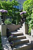 Masonry steps with potted plants on treads and balustrade