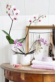 Potted orchids and jewellery rack in gold frame on damaged, antique console table