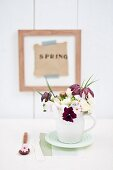 Spring posy in white clay jug; violas, primulas, snake's head fritillaries, viburnum and cream narcissus; Lettering reading 'Spring' in wooden frame in background