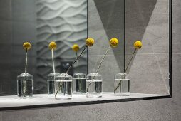 Yellow flowers in glass vases in front of mirror in niche