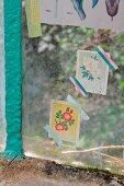 Nostalgic pictures of plants decorating greenhouse windows