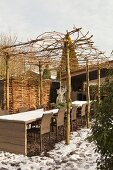 Chairs at long table under living pergola supported by tree trunks in wintery courtyard
