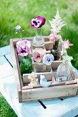 Violas, pansies, aquilegia and astilbes in various glass bottles in old, wooden bottle crate