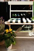 Summery balcony with black and white striped seat cushion on white bench