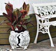 Pflanze mit Übertopf und Gartenbank aus weissem Gusseisen
