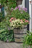 Blühende Blumen im Holz Pflanzgefäss