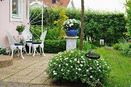 Busch mit weissen Blüten vor Terrasse mit Stühlen und Tisch aus weiss lackiertem Metall