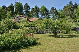 Sommerlicher Garten mit gemähter Wiese, im Hintergrund Landhaus