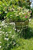 Blühende Blumen und bepflanzter Holzzuber in sommerlichem Garten