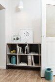 Books, light blue, retro milk churns, white terrarium and framed drawing on open-fronted shelves in living area