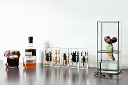 Jars of jam next to insects encased in clear resin blocks and miniature propagator on shiny surface
