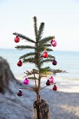 A pine spring stuck into a wooden stake and decorated with mini baubles with the sea in the background