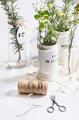 Reel of twine and scissors in front of vases of flowers and herbs