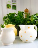 Yellow and white jugs, one with polka dots in front of potted herbs
