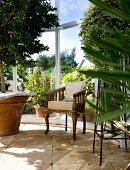 Antiker Armlehnstuhl mit weissen Polstern zwischen Buchsbäumen im Wintergarten