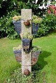 Pots of sempervivums attached to stone pillar in garden