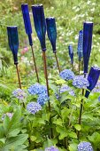 Decorative blue glass bottles upturned on iron rods amongst hydrangeas