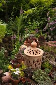 Succulents in terracotta pots and decorative candle lantern amongst flowering plant in garden