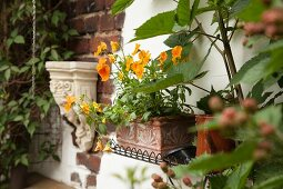 Orange violas planted in terracotta window box and antique Greek-style stone bracket mounted on brick façade