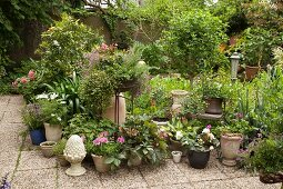 Potted plants and garden ornaments on paved terrace in planted courtyard