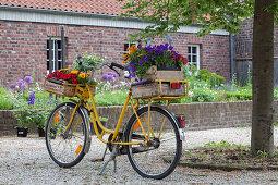Gelbes Vintage Fahrrad mit Blumen in Holzkisten auf Gepäckträgern, im Hintergrund Hochbeet vor Bauernhaus aus Ziegel