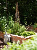 Sunny raised bed with brick surround, cane obelisk and zinc watering can