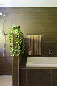Modernes elegantes Bad mit braunen Fliesen und halbhoher Wandscheibe mit Grünpflanze zum Duschbereich