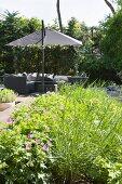 Gemütlicher, eleganter Gartenplatz mit grauen, modernen Rattanmöbeln, Sonnenschirm und grüner Rabatte