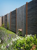 Wooden fence with alternating horizontal and vertical board panels behind flowering plants in garden