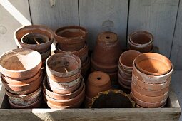 Collection of terracotta plant pots in vintage wooden crate