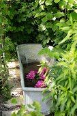 Verzinkte Metallwanne mit schwimmenden Blüten im Garten
