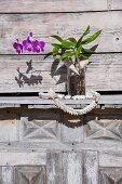 Purple-flowering orchid in glass vase on wooden shelf outside
