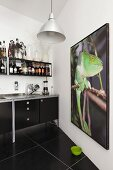 Large photo of chameleon in black kitchen with shelving and tiled floor