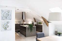 Open-plan modern kitchen with free-standing island counter below stainless steel extractor hood