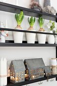 Zinc house lanterns, festive decorations and hyacinths on narrow plate rack on wall