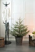 Coat rack, Christmas tree in zinc pot and trunk covered in animal-skin rug in front of wardrobe
