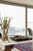 Branches in glass vase on wooden bench, dog on floor cushion and glass wall with harbour view
