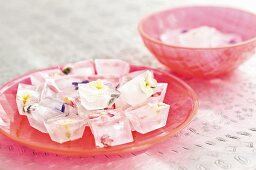 Ice cubes containing flowers on pink glass dish