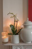 Tealight holder, white pillar candles, orchids and ceramic pot with lid on mantelpiece