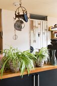 House plants on kitchen worksurface and pans hanging from vintage ceiling hooks