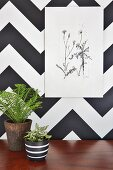 Botanical illustration on wall covered in black and white geometric pattern above potted house plants