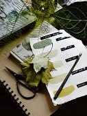 Colour chart, leaves, ink pen and vintage shears
