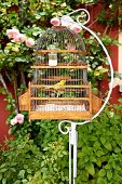Antique birdcage hung from vintage metal stand in front of rose climbing on red house façade